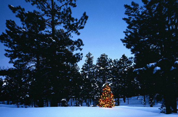 01-immagini-di-natale-north-arizona.jpg