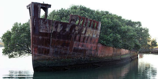 1-SS-Ayrfield-2.jpg