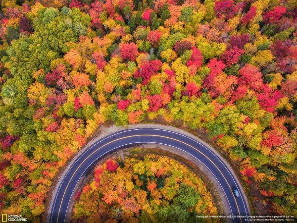 11-foto-paesaggio-bosco-autunno.jpg