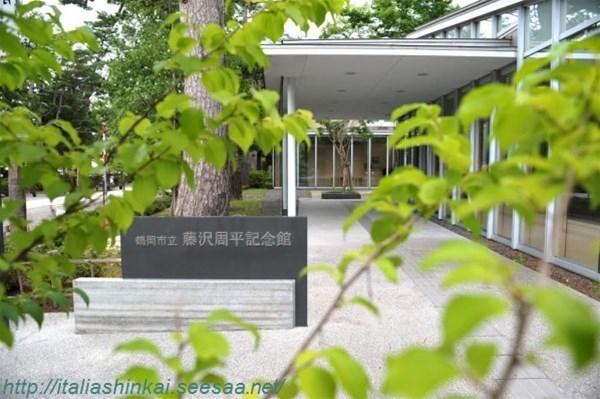 11-fujisawa8_GF.jpg