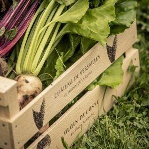 12-paris-plaza-athenee-adpa-vegetables-square-300x300.jpg