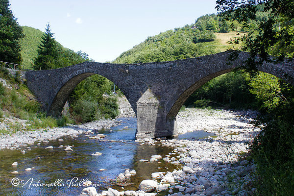 2-2-ponte della fola_b.jpg