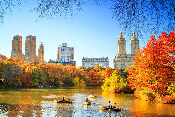 2-foliage-new-york.jpg