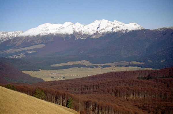 2-foresta-del-cansiglio-panorama.jpg