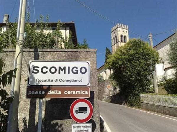 2-scomigo001_GF.jpg