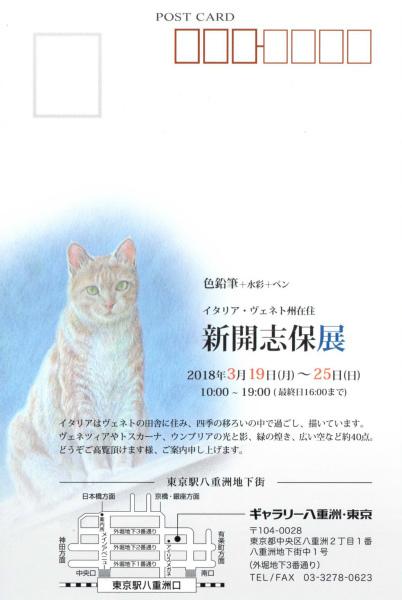 +東京展DM_1.jpg