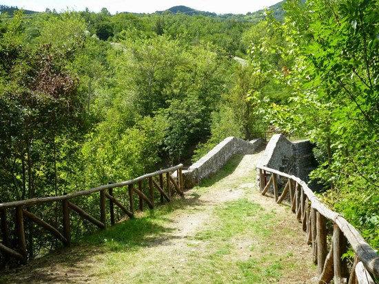 3-3-60702_ponte_della_luna_riolunato.jpg