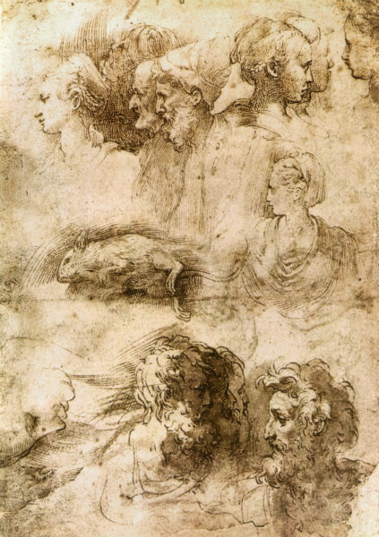 3-Parmigianino,_studi_di_teste_e_topo_morto,_parma_gn.jpg
