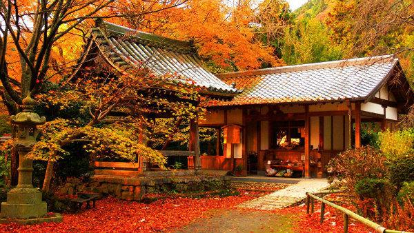 3-foliage-giappone.jpg