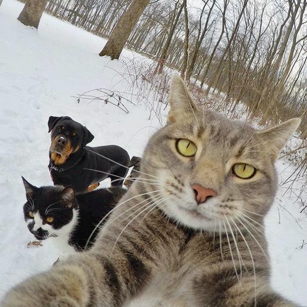 3-selfie-sulla-neve.jpg