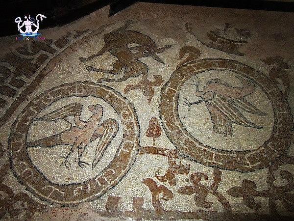 33-il-mosaico-medievale-di-brindisi-4.jpg