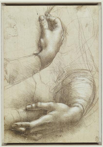 3sLeonardo-da-Vinci-Studio-di-braccia-e-mani-per-il-Ritratto-di-Cecilia-Gallerani-.jpg