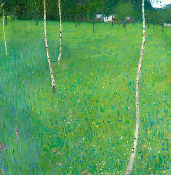 4-La fattoria delle betulle.jpg