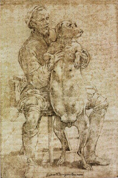 4-Parmigianino,_autoritratto_con_cagna_gravida.jpg