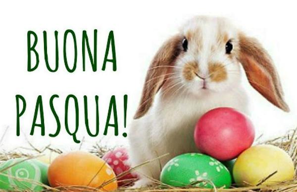 4-auguri-Buona-Pasqua.jpg