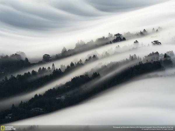 4-foto-paesaggio-nebbia-colline-california.jpg
