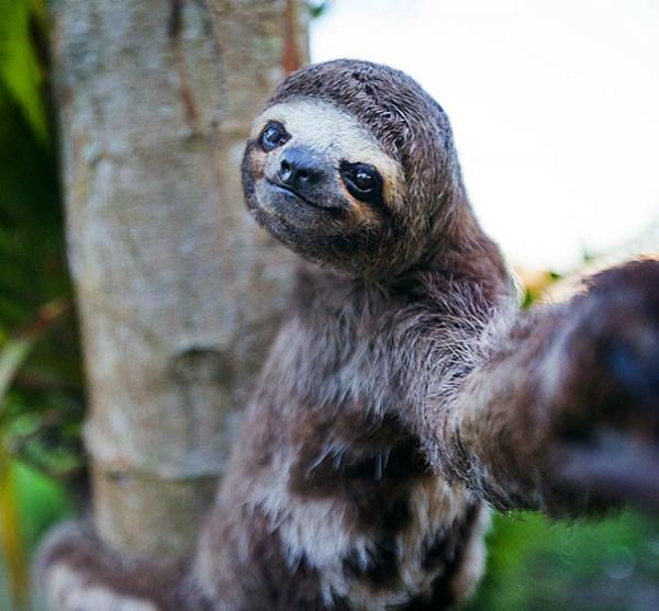 4-selfie-al-rallentatore.jpg