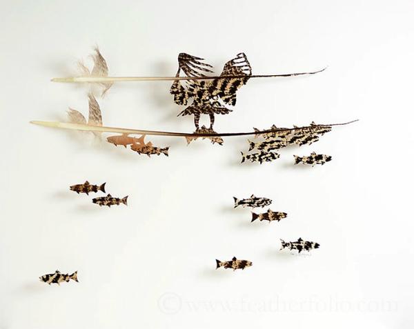 5-falco-pescatore.jpg