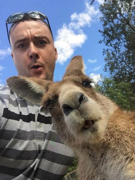 5-selfie-con-canguro.jpg