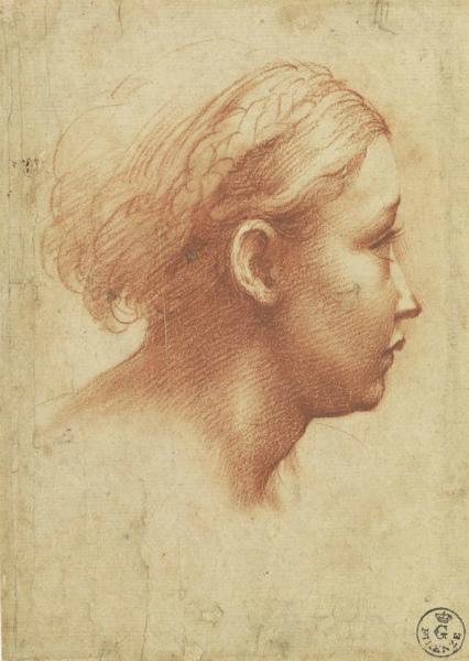 7-1513687116714282-parmigianino-disegno.jpg