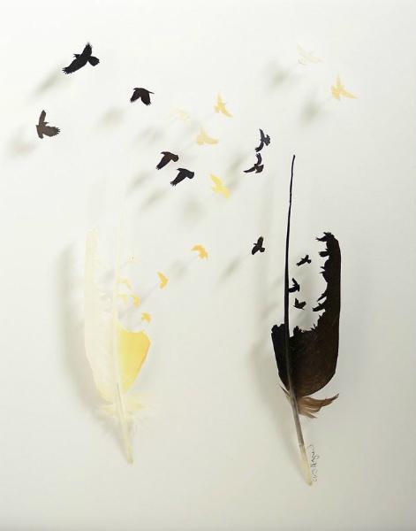 7-stormo-uccelli-bianchi-neri.jpg