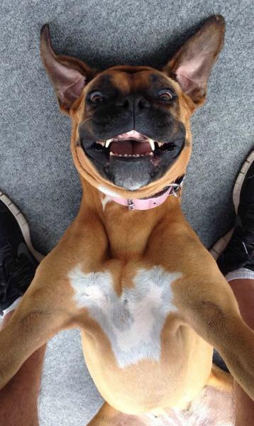 8-selfie-a-testa-in-giu.jpg