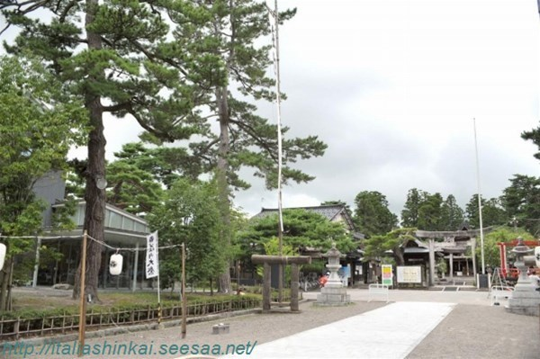 9-fujisawa9_GF.jpg