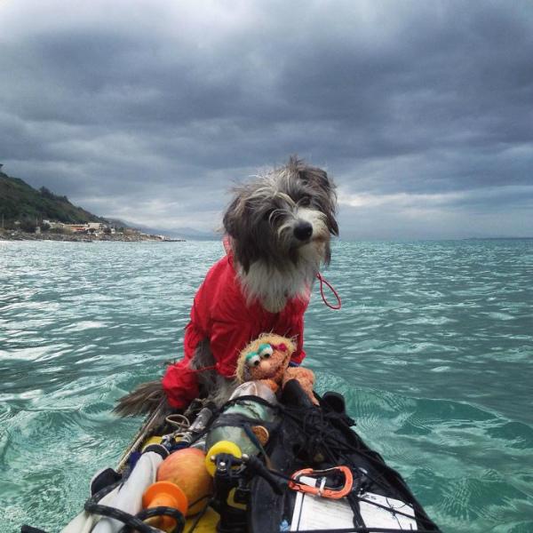 giro-del-editerraneo-in-kayak-con-il-cane-2.jpg