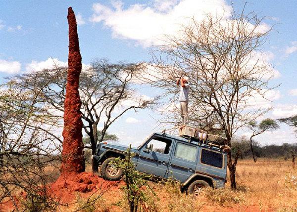 viaggio-incredibile-26-anni-per-il-mondo-in-jeep-14.jpg